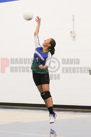 Girls JV Volleyball - 2014
