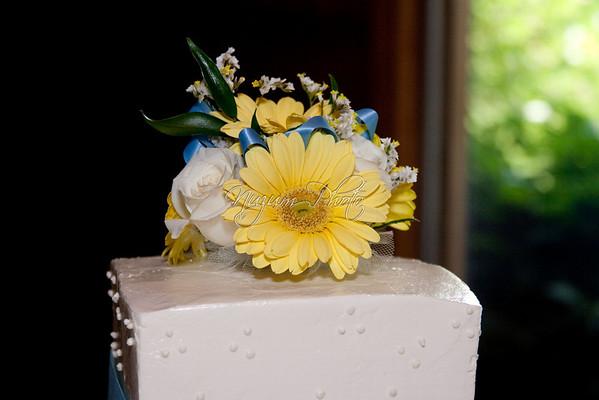 Cake Cutting  - Julia and Eric