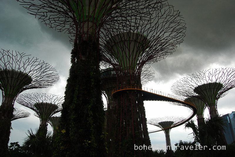 Super Trees at Gardens by the Bay (5).jpg