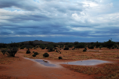 The rare sight of pooled water under the clouds of blame in the Australian Desert.