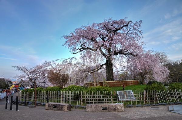 Kyoto - East-South