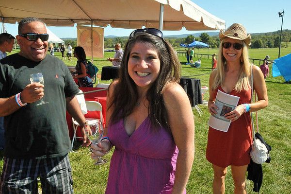 2012 Virginia Wine Festival - Great Meadow