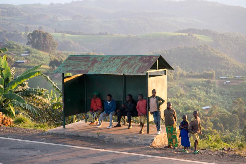 Nyugwe-Rwanda-76.jpg