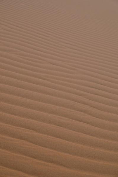 day4-SaharaCamp-51.jpg