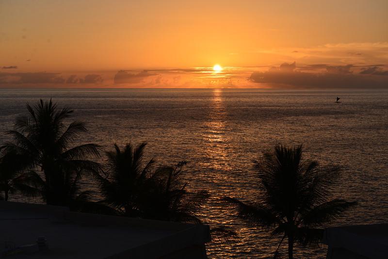 Big Island - Hawaii - May 2013 - 41.jpg