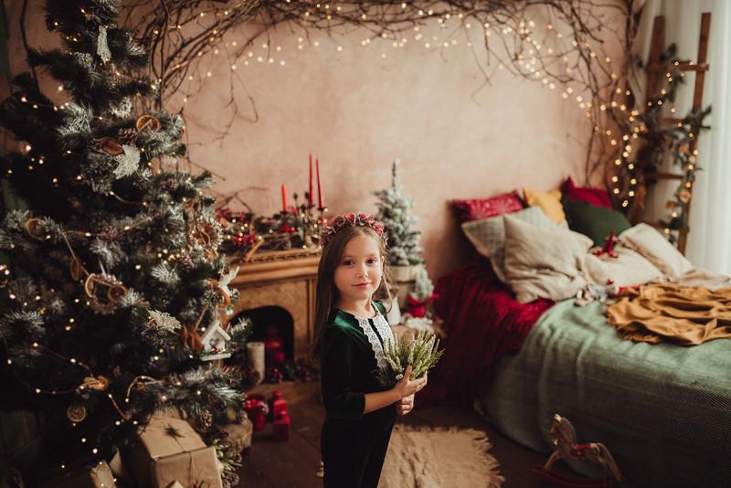 Craciun 2019_Catalina Andrei Photography-15.jpg