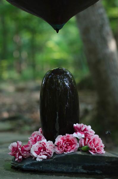 Yoga Retreat Drip