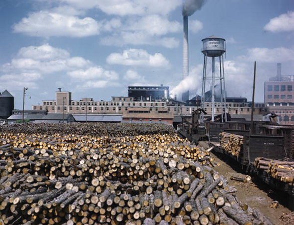 Jax-paper mill.jpg