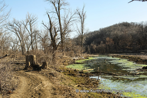 Fontenelle Forest - March 13 2012