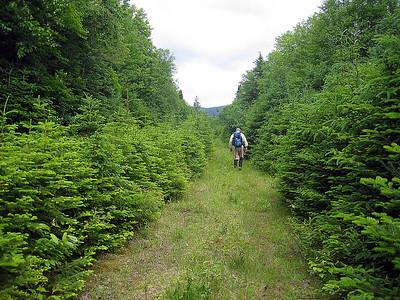 Maine: Whitecap & North Kennebago Divide bushwhack: June 24