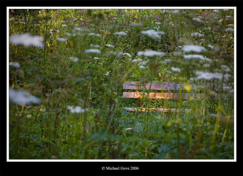 Forgotten bench Blaise Castle (64097650).jpg