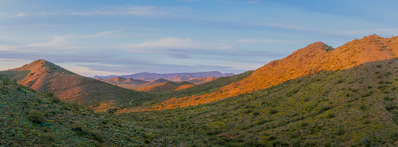 Panorama of a green desert valley with lush vegetation and a partly cloudy blue evening sky in the Sonoran