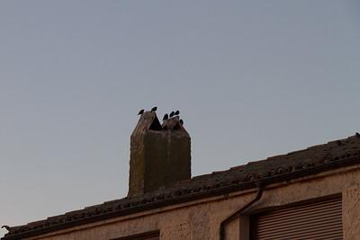 3.11 Soría - Cuenca