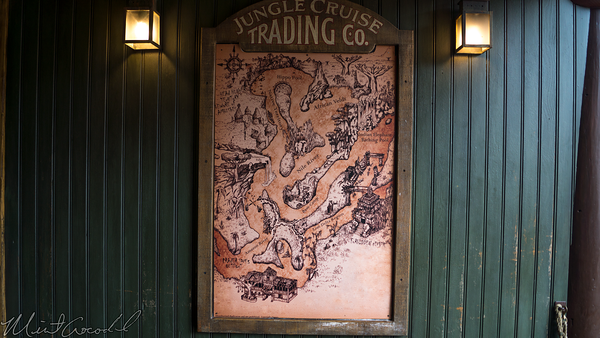 Disneyland Resort, Disneyland, Adventureland, Jungle Cruise, Jungle, Cruise, Alligator, Crocodile