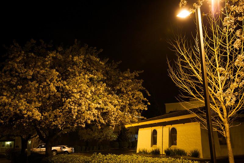 2009-02-05 at 19-33-10 - IMG_3753.jpg