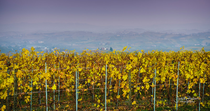 The Langhe, Italy
