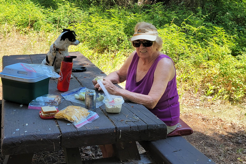 Malone Springs picnic area