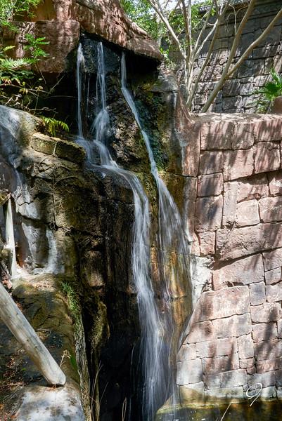 Biopark 300616W-40.jpg