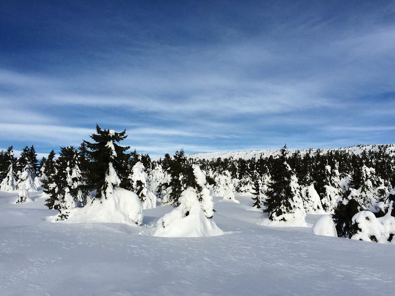 Skiing_Norway IMG_0829