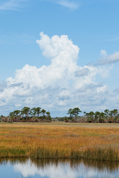 Drought in the Wetlands - Clouds build over the dry and colorful grasses