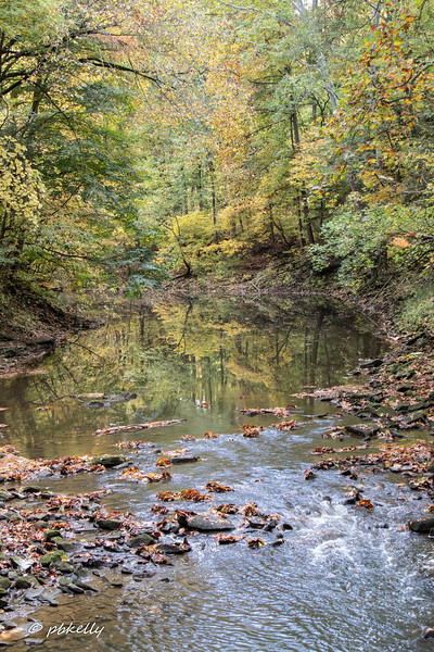 Black River 101320-7.jpg