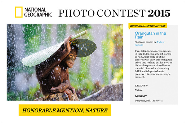 Honorable Mention Award at National Geographic Photo Contest