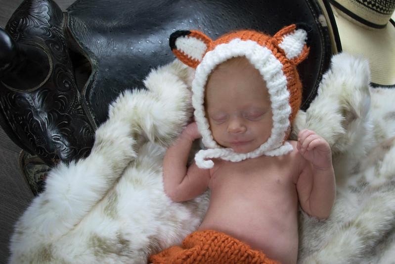 Brycen fox 8A9A1827.jpg