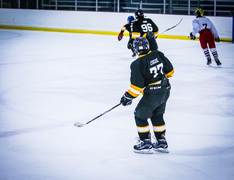 Bruins2-445.jpg
