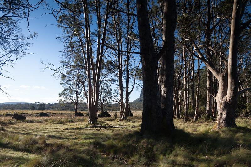 Tasmania_2015_156.jpg