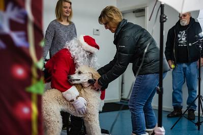 Alpha Dog Pet Center