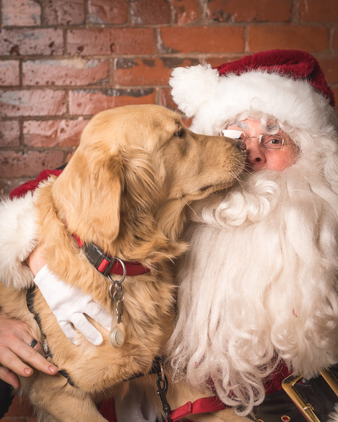 Santa Photos at Healthy Pets HQ for Sit With Me - 12.12.2015