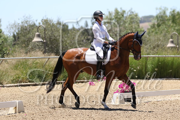 Spirit Equestrian June 2021