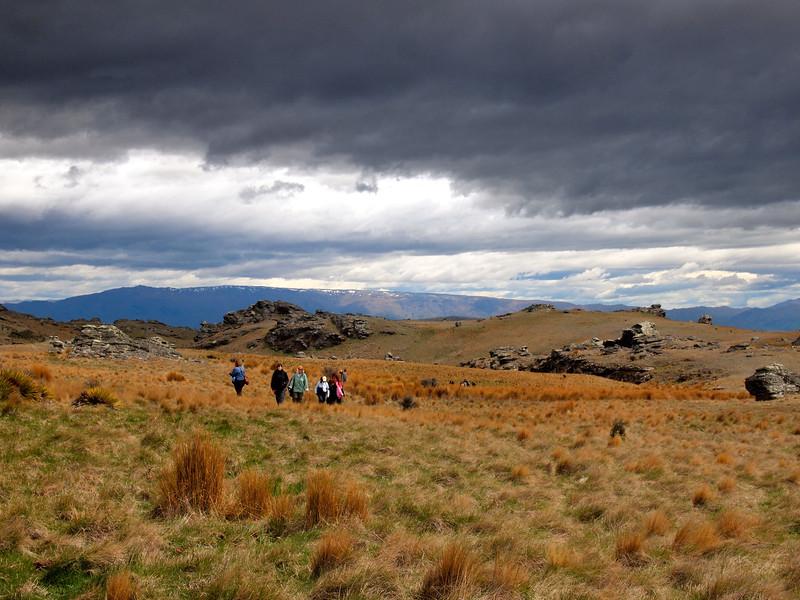 New Zealand landscape in Poolburn