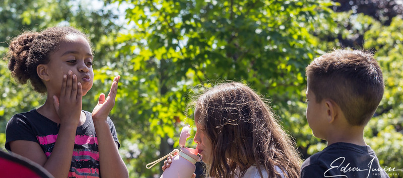 Rotary Park Picnic Aug 2019