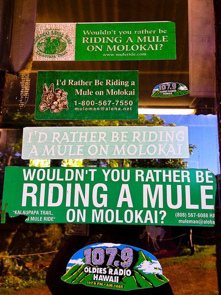 mule banners.jpg