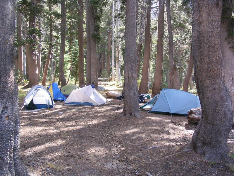 SequoiaSep04-03.jpg