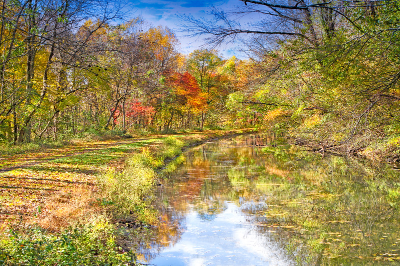 Towpath Canal in Autumn5.jpg