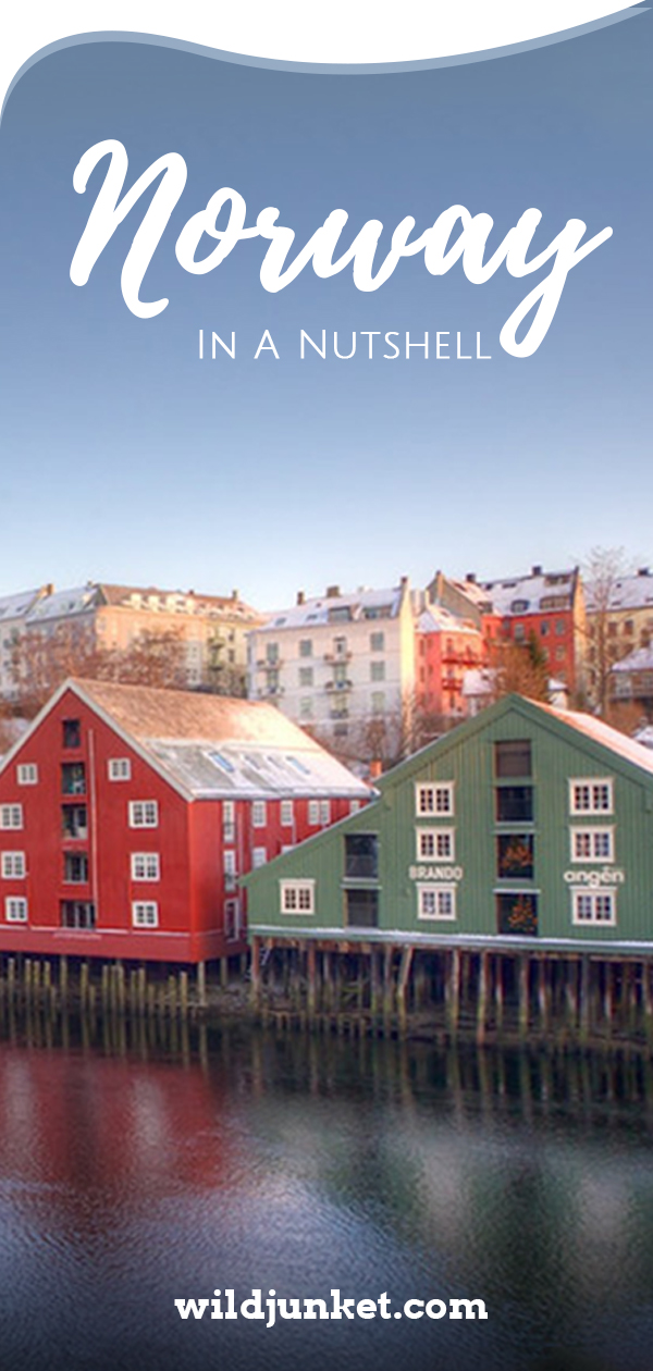 Norway in a Nutshell -- A Blogger's Guide - WildJunket Travel Blog