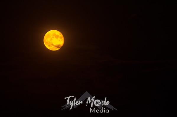 Moon 8.21.13