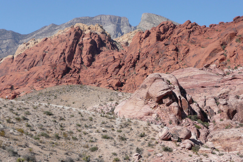 Calico Hills Trail. Red Rock Canyon