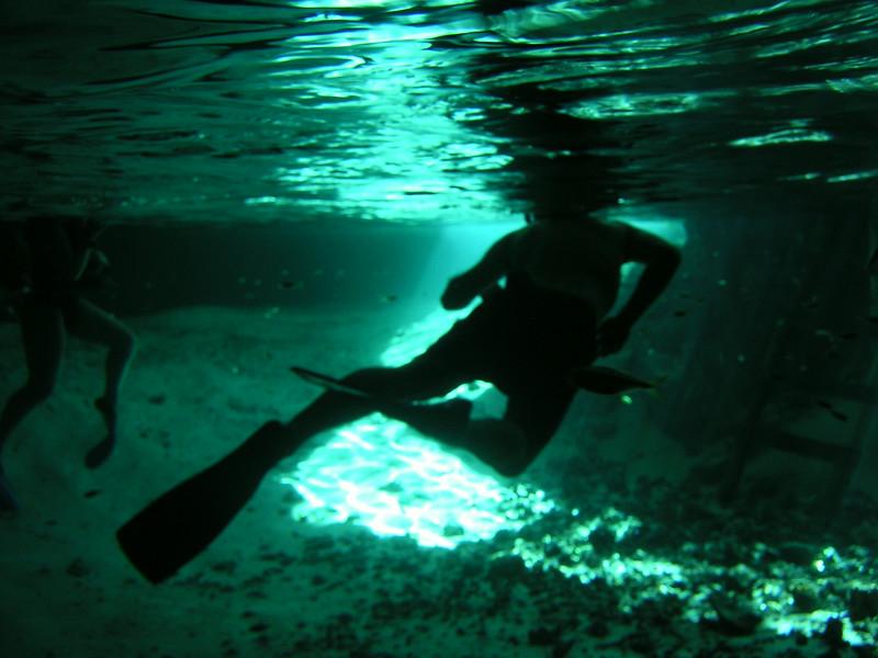 58 Swimmers.jpg