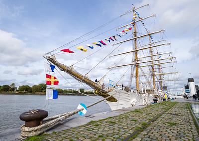 Arrival ARA Libertad to Antwerp 2019