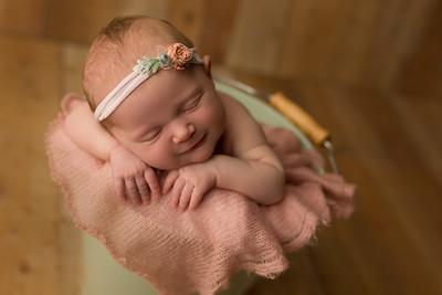 Harlow F Newborn
