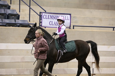 77. Academy Equitation 8 & Under WT On Lead