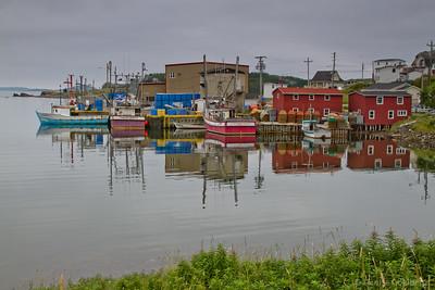 Terra Nova & the Eastport Peninsula