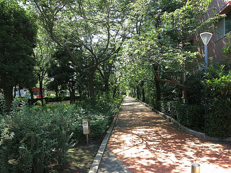 The entrance walk runs alongside the museum