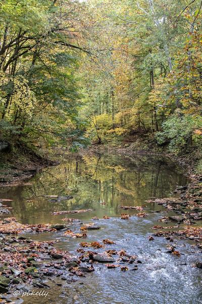 Black River 101320-5.jpg