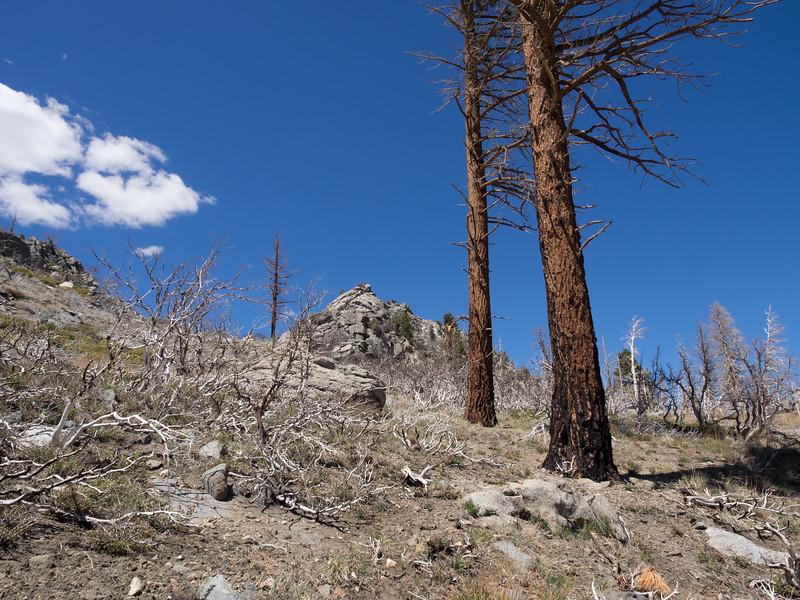 Nearing Crag Peak