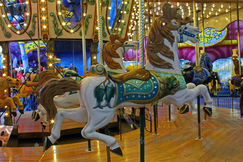 A Horse to Ride ~ Carousel at Galaxy Land at the West Edmonton Mall.