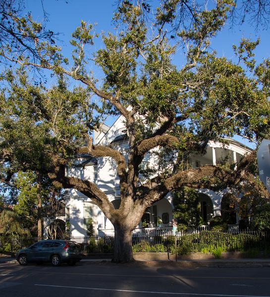 20161126_Charleston_0242.jpg